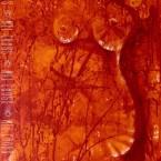 'Hot' - Mel Cross
